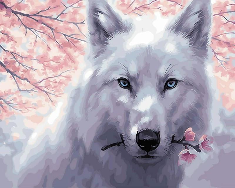 Картина по Номерам 40x50 см. Белый волк Rainbow Art