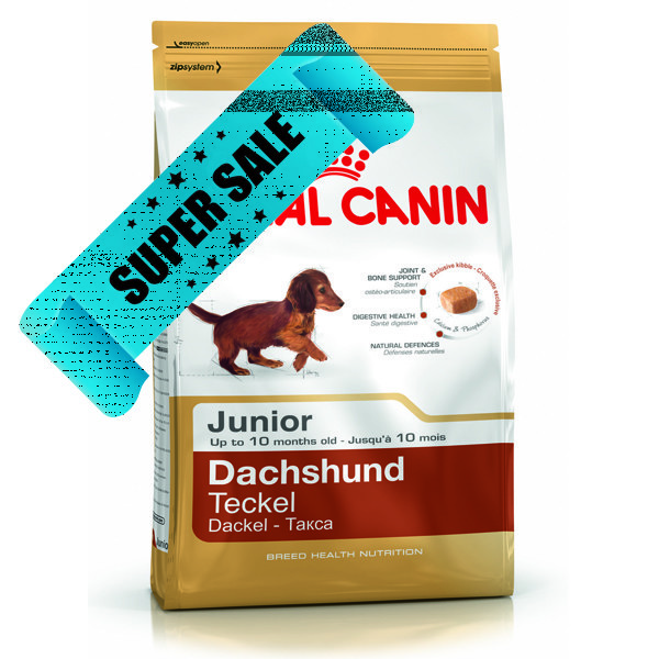 Сухой корм для собак Royal Canin Dachshund Junior 1,5 кг
