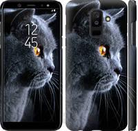 "Чехол на Samsung Galaxy A6 Plus 2018 Красивый кот ""3038c-1495-25032"""
