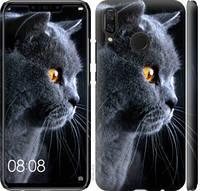 "Чехол на Huawei Nova 3 Красивый кот ""3038c-1535-25032"""