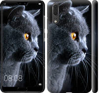 "Чехол на Huawei P20 Красивый кот ""3038c-1396-25032"""