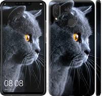 "Чехол на Huawei P Smart Plus Красивый кот ""3038c-1555-25032"""