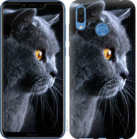 "Чехол на Huawei Honor Play Красивый кот ""3038u-1533-25032"""