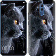 "Чехол на Huawei Mate 20 Lite Красивый кот ""3038u-1575-25032"""