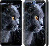 """Чехол на Huawei Y6 2018 Красивый кот """"3038c-1637-25032"""""""