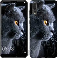 """Чехол на Vivo IQOO Красивый кот """"3038u-1779-25032"""""""