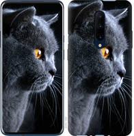 "Чехол на OnePlus 7 Pro Красивый кот ""3038u-1696-25032"""