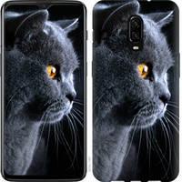 "Чехол на OnePlus 6T Красивый кот ""3038u-1587-25032"""