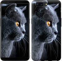 "Чехол на OnePlus 5T Красивый кот ""3038u-1352-25032"""