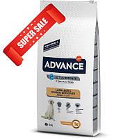 Сухой корм для собак Advance Labrador & Golden Retriever Adult 12 кг