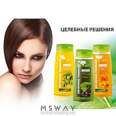 Bielita - Целебные решения Шампунь календула и череда для оздоровления волос и кожи 480ml, фото 3