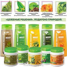 Bielita - Целебные решения Шампунь календула и череда для оздоровления волос и кожи 480ml, фото 2