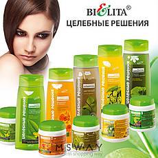 Bielita - Целебные решения Шампунь чистотел и чайное дерево против жирности волос 480ml, фото 3