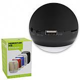 Портативная Bluetooth колонка HOPESTAR H8, фото 5