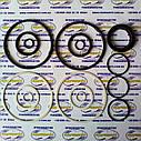 Ремкомплект гидроцилиндра ЦС-125 задней навески (ГЦ 125*50) трактор МТЗ-80/82/100/102, фото 2