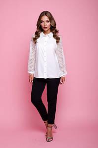 Блуза Фемида #O/V