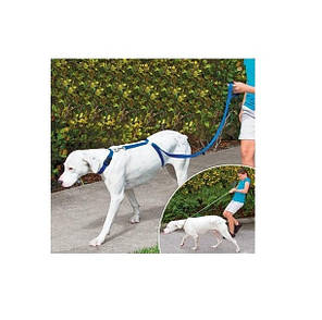 Ошейник для собак Instant Trainer Leash (nri-2153), фото 2