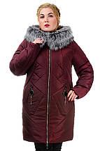 Женская зимняя Куртка женская   «Ирма», р-ры 46-54, №222 , фото 3