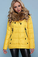 Куртка Куртка 18-168 #O/V