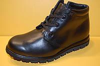 Детская зимняя обувь Aleksandro Украина 17850 Для мальчиков Черные размеры 32_37, фото 1
