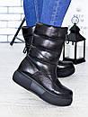 Зимние женские кожаные сапоги на завышенной подошве 75OB98, фото 3