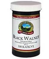 Грецкий орех (Black Walnut)