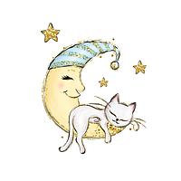 Сатин. Цифровая печать.Котик белый на луне 35*35