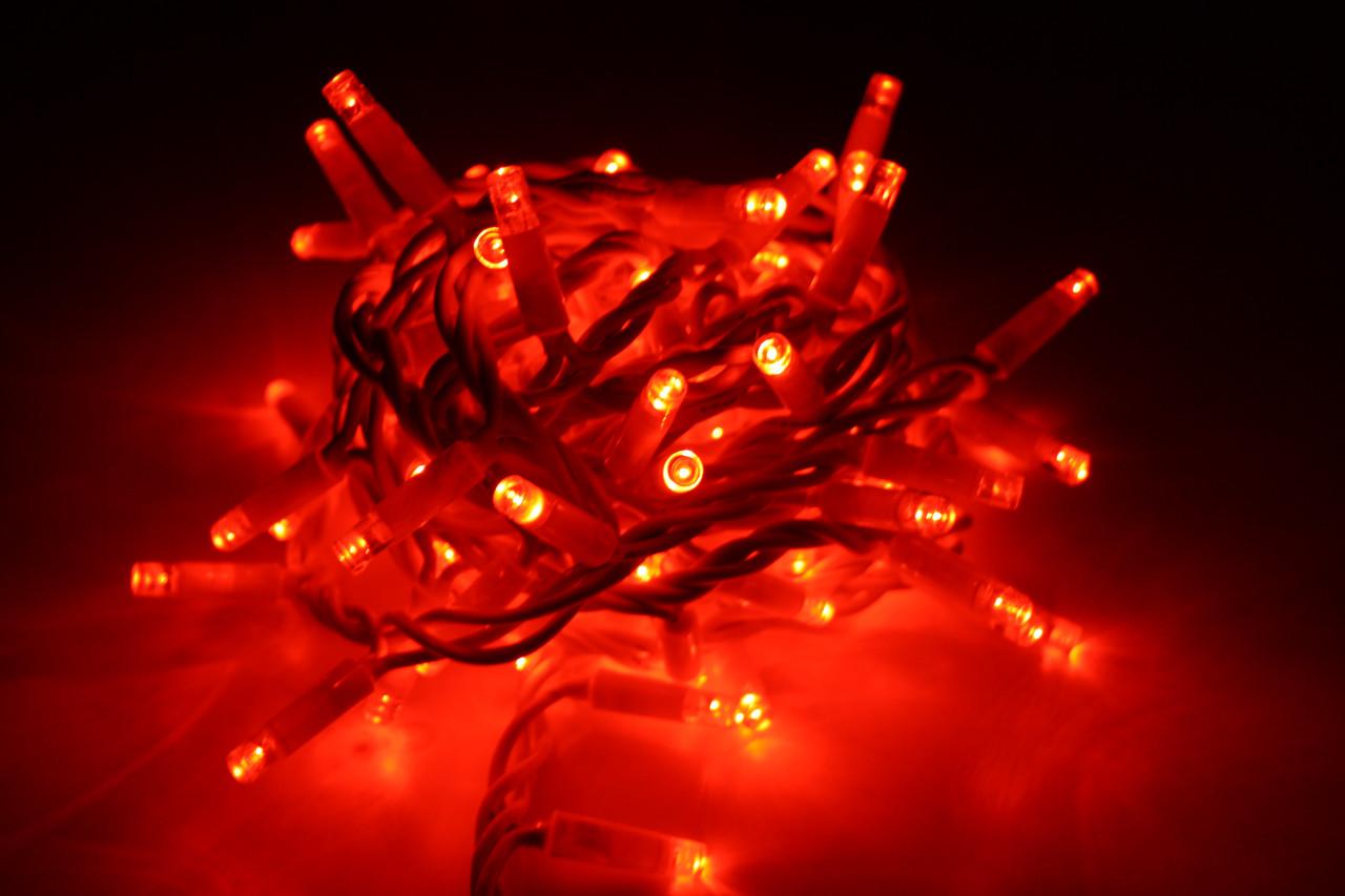 Уличная светодиодная гирлянда нить Lumion String Light (Стринг лайт) 200 led наружная цвет красный