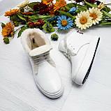 Женские зимние хайтопы белые кожаные WHYNOT, фото 7