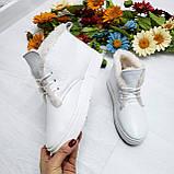 Женские зимние хайтопы белые кожаные WHYNOT, фото 8