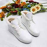 Женские зимние хайтопы белые кожаные WHYNOT, фото 9