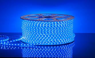 Дюралайт Плоский (5050) Синий  (100 метр/60Лед)
