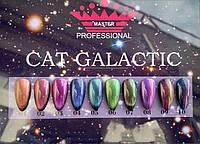 Гель-лак кошачий глаз Master Galactic , 8 мл,палитра 10 цветов