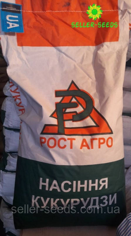 Семена кукурузы ДН Рава ФАО 500