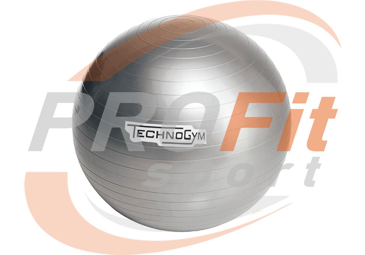 Мяч для фитнеса (фитбол) TECHNOGYM 65 см