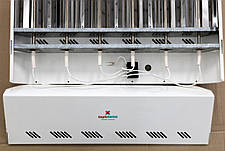 Инфракрасный обогреватель Теплотема Zone 6000, фото 3