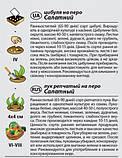 "Семена лука ""Салатный"" (0,5 г) от Agromaksi seeds, фото 2"