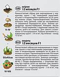 """Насіння огірка """"12 місяців"""" F1 (0,25 г) від Agromaksi seeds, фото 2"""