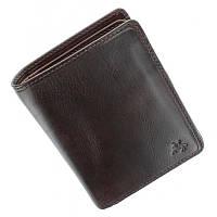 Портмоне кошелек мужское Visconti TSC44 Lucca (Brown) коричневое кожаное двойного сложения для карт и монет