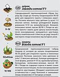 """Семена огурца """"Всегда готов!"""" F1 (0,25 г) от Agromaksi seeds, фото 2"""