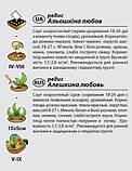 """Семена редиса """"Алешкина любовь"""" (3 г) от Agromaksi seeds, фото 2"""