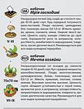 """Семена кабачка """"Мечта хозяйки"""" F1 (1 г) от Agromaksi seeds, фото 2"""