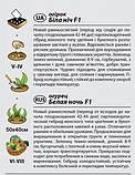 """Насіння огірка """"Біла ніч"""" F1 (0,25 г) від Agromaksi seeds, фото 2"""