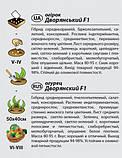 "Семена огурца ""Дворянский"" F1 (0,3 г) от Agromaksi seeds, фото 2"