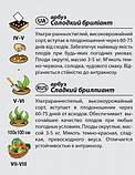 """Насіння кавуна """"Солодкий діамант"""" (2 р) від Agromaksi seeds, фото 2"""