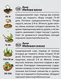 "Семена дыни ""Медовая сказка"" (2 г) от Agromaksi seeds, фото 2"