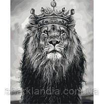 """Картина по номерам Животные птицы """"Король Лев"""" 40*50см KHO4079 Лев"""