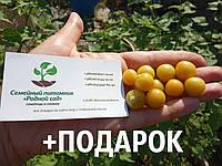Физалис земляничный семена 10 шт фізаліс насіння + инструкции, фото 1