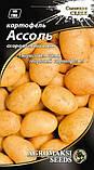 """Семена картофеля """"Ассоль"""" (0,01 г) от Agromaksi seeds, фото 2"""