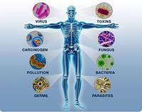 В Великобритании медики в шоке от бактерии, которую не может убить ни один антибиотик!